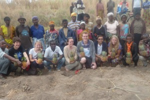 Team With Pineapple Cooperative/Supported by RDIS